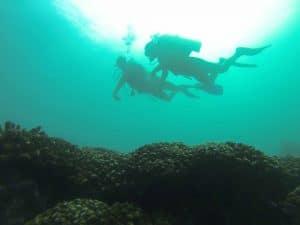 Scuba Diving in Huatulco Mexico